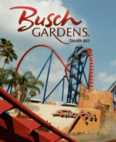 Busch gardens, Tampa, Florida - I worked here in was fun Tampa Florida, Florida Vacation, Florida Travel, Travel Usa, Vacation Destinations, Vacation Spots, Places To Travel, Places To See, Florida Festivals