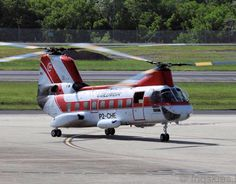 A recent visitor at #cairnsairport