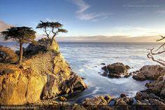 17 Mile Drive through Pacific Grove and Pebble Beach on the Monterey Peninsula, California