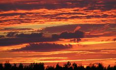 Kajoo, Pohjois-Karjala vuonna 2005.