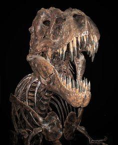 T-Rex skeleton still terrifying!!