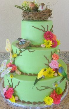 BIRD CAKES - Bing Images