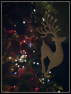 #Reindeer #Christmasdecorations  #Christmaslights #almostNewYear