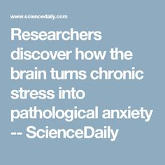 Researchers discover how the brain turns chronic stress into pathological anxiety -- ScienceDaily