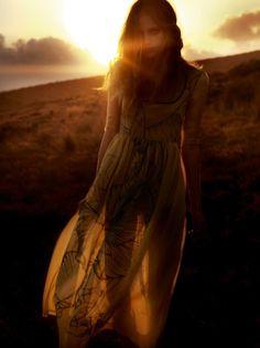 Sunset Seethrough