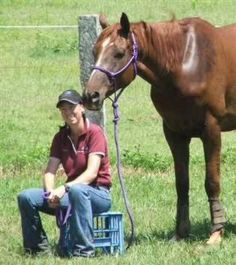 Breaking Your Own Horse Horse Training Tips, Horse Tips, My Horse, Broken Horses, Horse Riding Quotes, Tennessee Walking Horse, Mini Pony, Horse Facts, Into The West