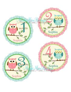 CUSTOM Baby Girl Owl Monthly Onesie Stickers Pink Green Blue. $9.95, via Etsy.