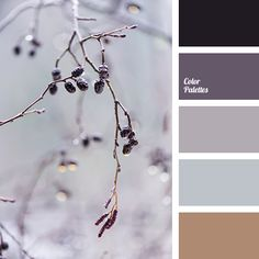 Color Palette #2514