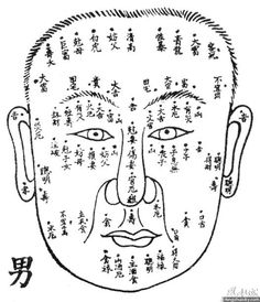 任脉生理 Ren Mai Diagrams ( Ren Meridian / Conception Vessel