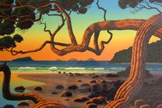Evening Light Coromandel by Tom Folwell