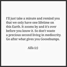 I'll just take a minute and remind you that we only have one lifetime on this Earth. it zooms by and it's over before you know it. So don't waste a precious second living in mediocrity. Go after what gives you goosebumps