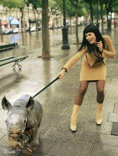 rhino! =)