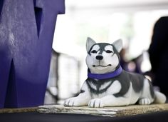 Husky Cake--perfect for UW grads who have huskies for pets--like me!