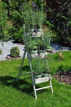 romatyczny stojący kwietnik ogrodowy