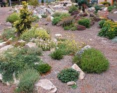 20+ Beautiful Rock Garden Ideas On A Budget - Page 6 of 24