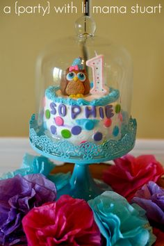Place smash cake in a pretty glass cake dish so and display at table  {day} with lil mama stuart: Colorful Owl 1st Birthday Party: Decorations