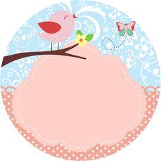 LATINHA- Pássaros
