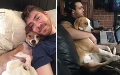 26 Pets Who Stole Their Owner's Significant Other And Didn't Think Twice