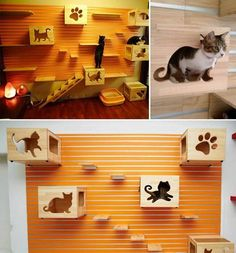 """opawz.com Cat wall -- apparently using retail 'slat wall' construction, creating boxes and display shelves to create an interesting cat """"tree."""" From FaceBook, http://www.facebook.com/IdeesDeGenie"""