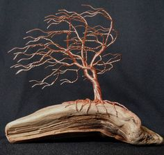 Wonderfully magical copper wire tree growing from driftwood being blown by the coastal wind. 7 inches tall 8 inches long Sculpture #170608 by TotallyTwistedTrees on Etsy