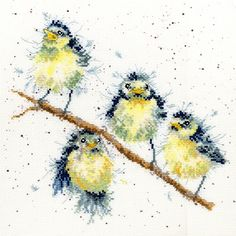 A family of fluffy blue tit chicks sitting on a branch.