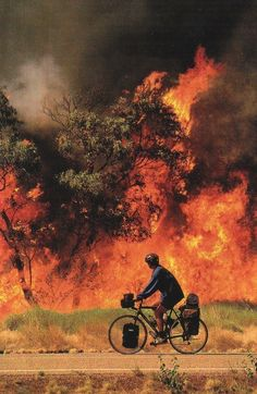 wildfire, australia - National Geographic