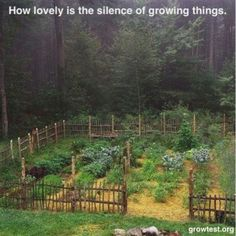 i love this primitive twig fence