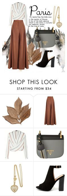 """""""Fall in love ❤ París, France"""" by mydesiredcloset ❤ liked on Polyvore featuring Bliss Studio, Zimmermann, Prada and Bamboo"""