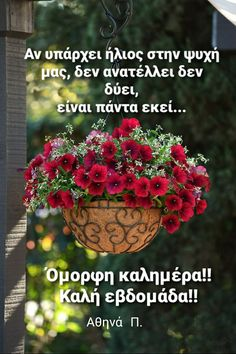 Good Morning Good Night, Wonderful Images, The Good Place, Cool Photos, Greece, My Favorite Things, Spring, Amazing, Quotes