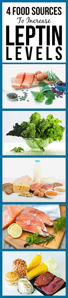 4 Amazing Food Sources To Increase Leptin Levels