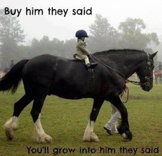 That's the most adorable thing. Funny horse quote. Wee little kid on huge horse.
