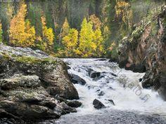 Kiutaköngäs - kiutaköngäs koski putous oulankajoki oulangan kansallispuisto Karhunkierros kuusamo virta virtaa virtaus uoma jokiuoma joki syksy värikäs ruska ruska-aika ranta joenranta kallio rantakallio kivi kivet luonto Lappland, Viria, Homeland, Waterfalls, Rivers, Finland, Natural Beauty, Tourism, Nostalgia