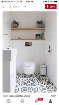 shelving above wall mounted toilet for storage and plants (lots of light)