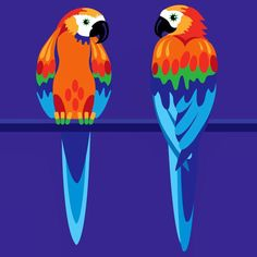 #parrots on a #perch #illustration by Suzanne Carpenter @illustrator_eye