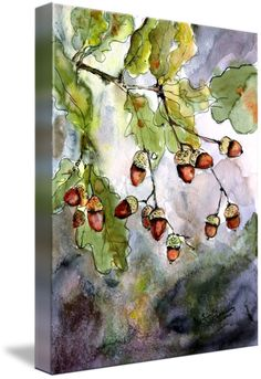 #Acorn Watercolor by Ginette Callaway