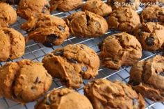 Make a batch of delicious pumpkin chocolate chip cookies using this recipe that only calls for 4 ingredients! Easy to make and so good to eat!