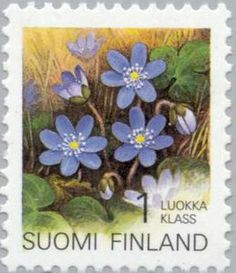 FINLAND - CIRCA a stamp printed in the Finland shows Hepatica, Flower, circa 1992 photo Postage Stamp Art, Stamp Printing, Flower Stamp, Small Art, Floral Illustrations, Fauna, Stamp Collecting, Poster, Fine Art America