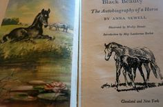 Black Beauty Children's Book Anne Sewell by mybonvivant on Etsy