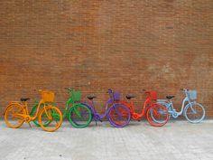 La vida es como una bicicleta: hay que avanzar para no perder el equilibrio. ¡Go Flexi!
