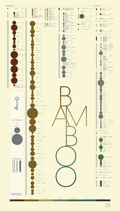 BAMBOO : A Growers Guide