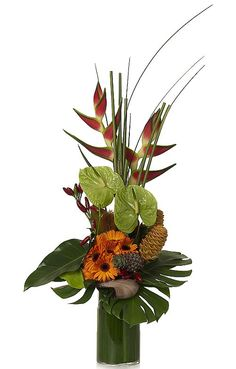 heliconia, anthurium and gerbera's