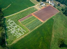 Check out the Yoders' Farm Corn Maze! (And Pumpkins and other Fun Fall Family activities)http://yodersfarm.com/