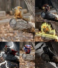 Superhero ! : These is a lot of different super Hero ! | pets