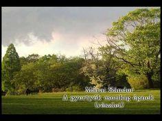 Márai Sándor - A gyertyák csonkig égnek - a magányról - YouTube Stuff To Do, Things To Do, Cute Store, Victorian Architecture, Horseback Riding, Rafting, Ottawa Kansas, Florence, Colorado