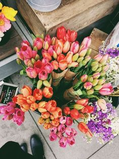 bright flowers for spring