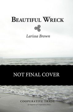 Beautiful Wreck. My book, almost here. If a Viking time travel love story appeals to you, please add it on goodreads via this pin. #vikingromance
