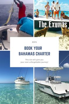 Your resource for all things Bahamas fishing, snorkeling and other water sports adventure. Book your next charter with one of our BSFN certified experts, get your gear from shirts to lures and head out for a day you will never forget. Fishing Uk, Fishing Guide, Fishing Girls, Sport Fishing, Kayak Fishing, Fishing Boats, Swimming Pigs, New Travel, Vacation Travel