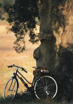 Serene solitude time... Photo de Nicolas Bruant www.facebook.com/loveswish