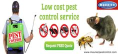 Pest control in Gurgaon and pest control in Dwarka are fire brands of Mourier pest control. The parent organization is a reputed and trusted name in controlling varied types of contagions.