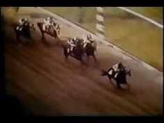 "Secretariat - Preakness Stakes 1973  Watch the first turn. Secretariat makes an unprecedented, unbelievable move from last to first that makes my hair stand up. Then at the end: ""But Ronny Turcotte has his whip put away. Secretariat has put them away..."""